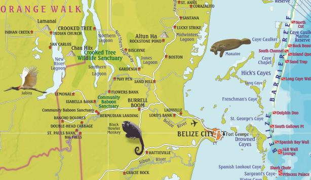 detail Belize 1:432t guide & dive mapa FRANKO´S
