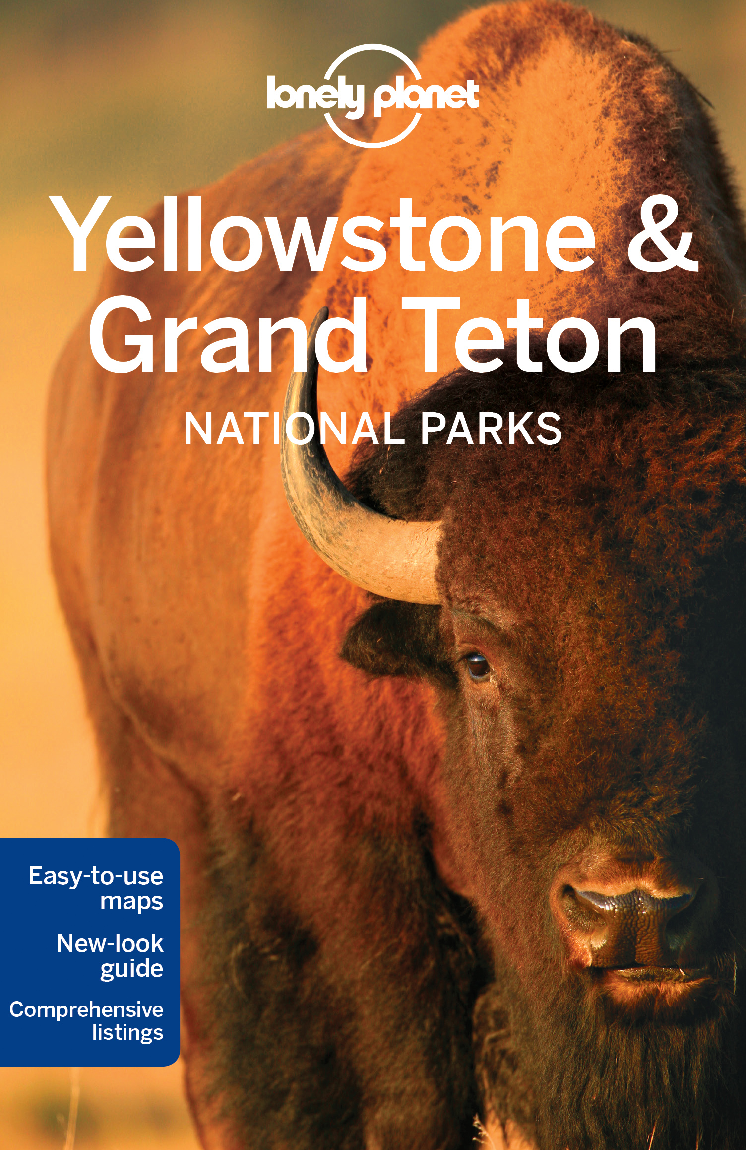 Yellowstone & Grand Teton Nation Park průvodce 4th 2016 Lonely Planet