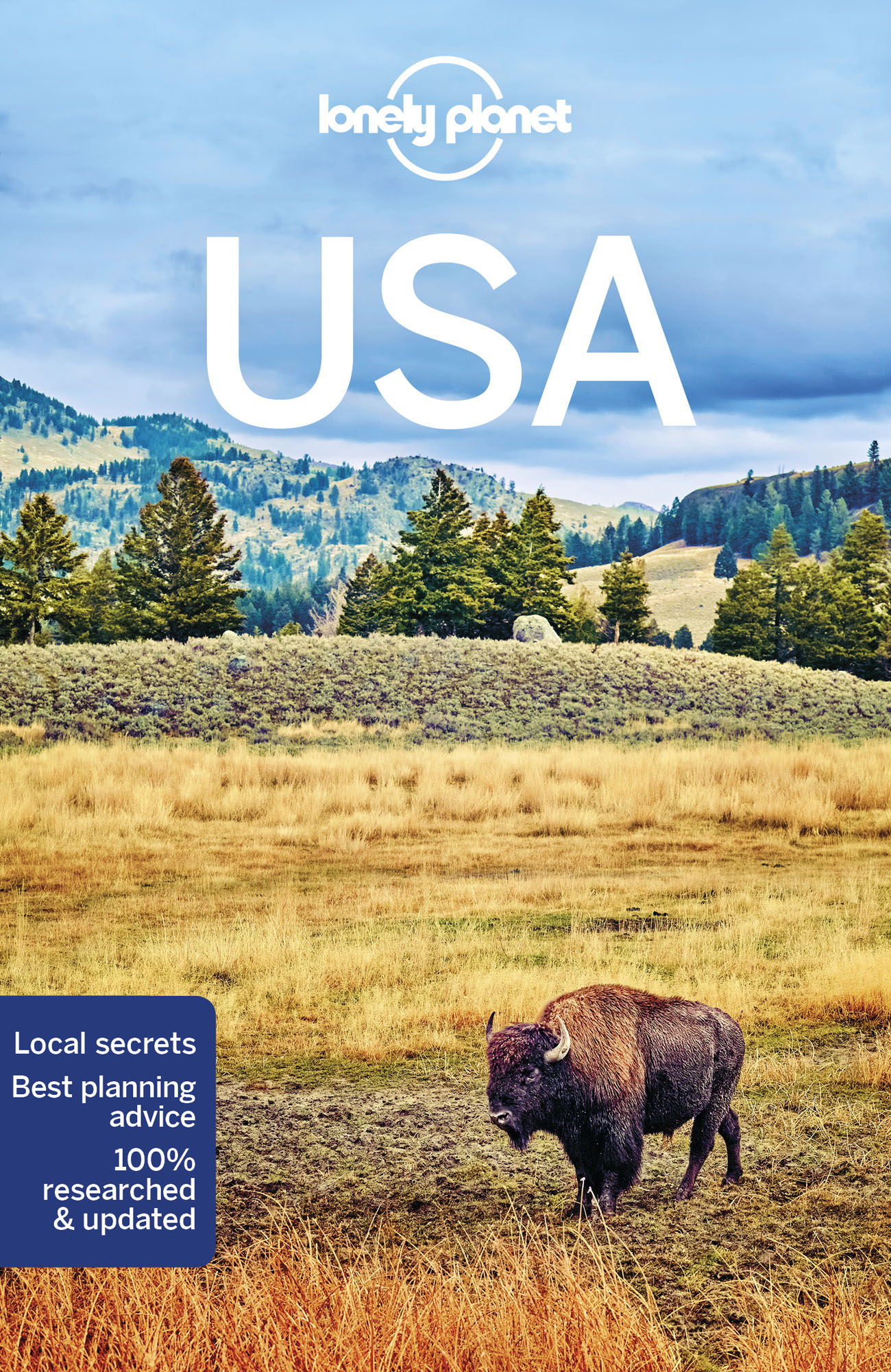 USA průvodce 10th 2018 Lonely Planet