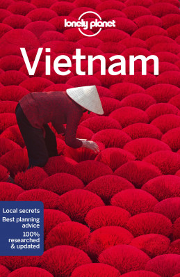 Vietnam průvodce 14th 2018 Lonely Planet